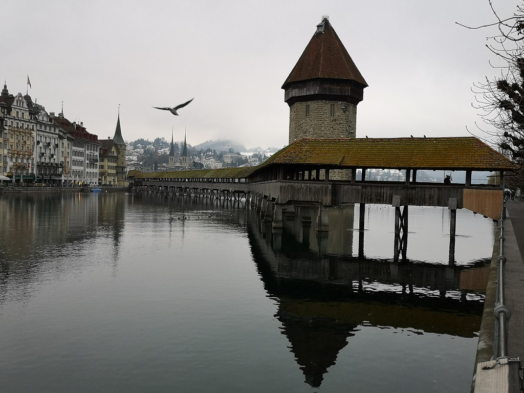 Pont en bois de Lucerne et oiseau
